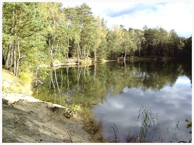 Einsamer Waldsee