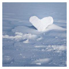 ... einsames Herz zum Dahinschmelzen