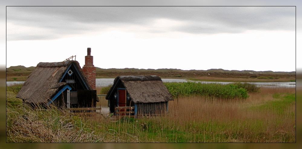 Einsamkeit am Fjord