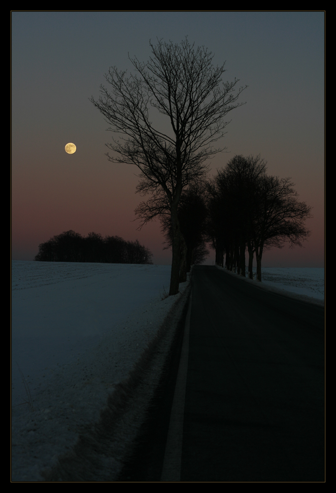 Einsamkeit II ...