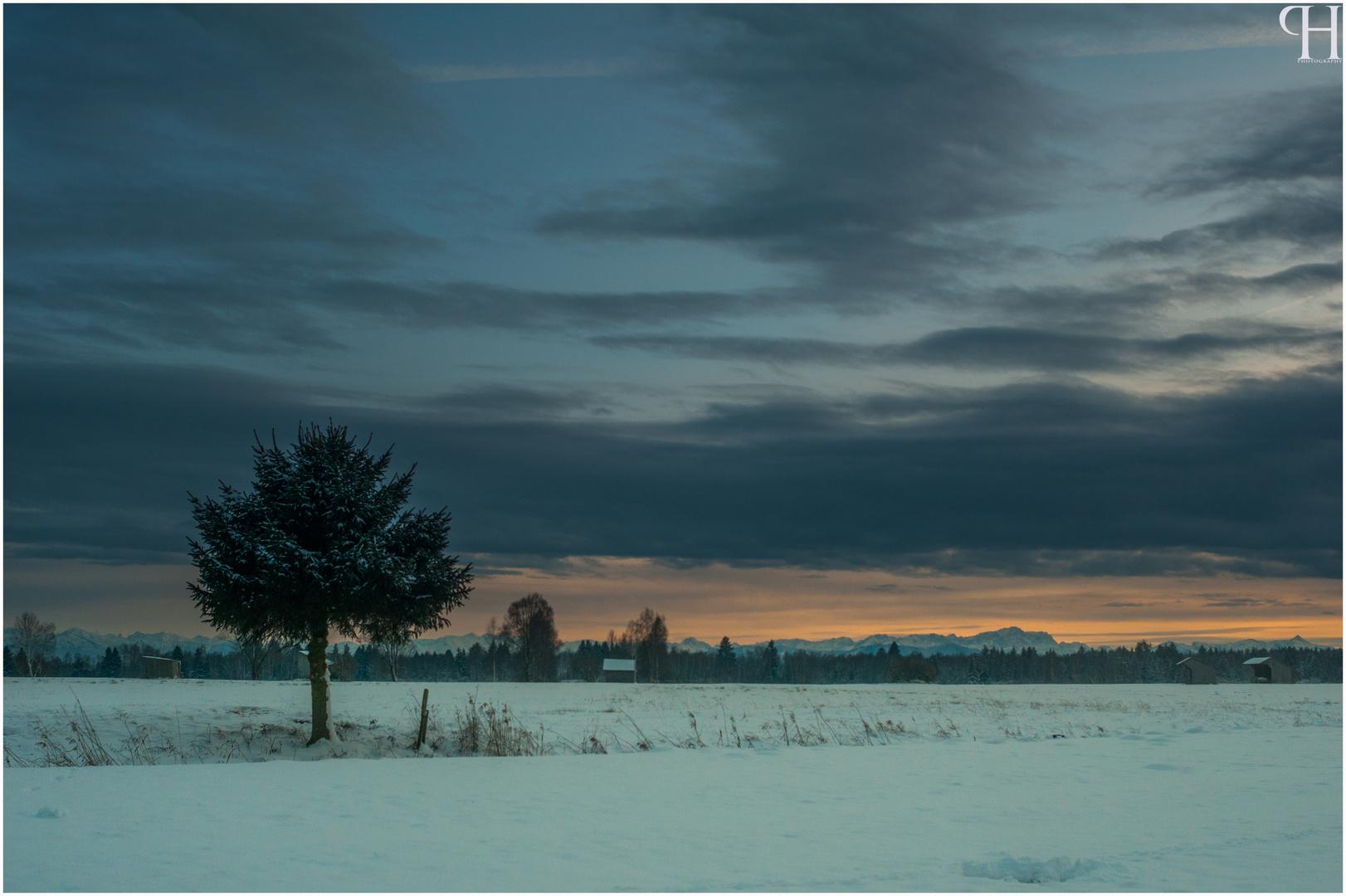 Einsamkeit im Schnee...