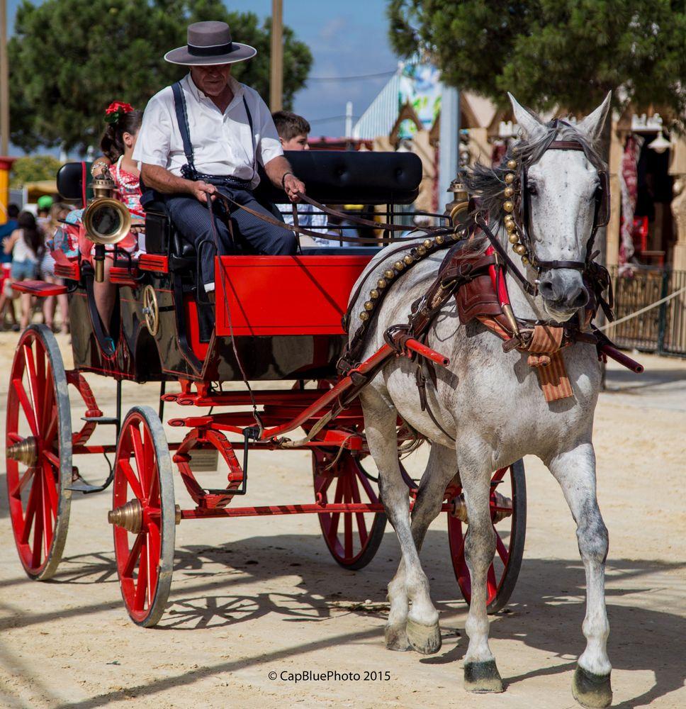 Einspänner auf der Feria Chiclana