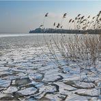 Eis am Bodensee, eisige Aussichten auf der Mainau
