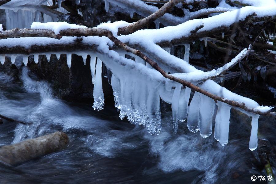 Eis am Stiel