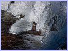 Eis auf dem Getzbach 3