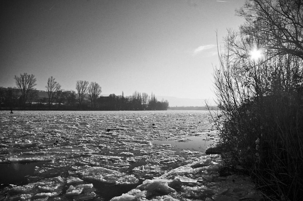 Eis auf der Mosel - Black & White Version