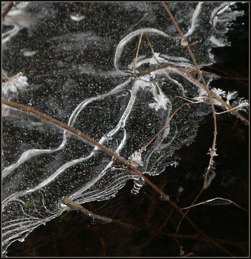 Eis-Detail