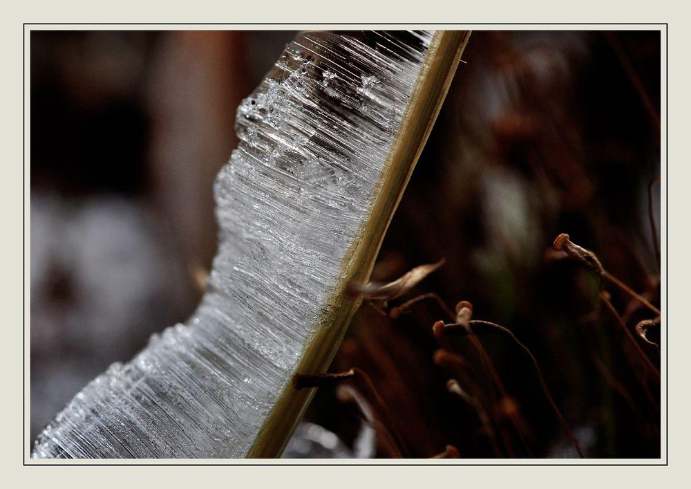 Eis schmilzt durch Wärme . . .