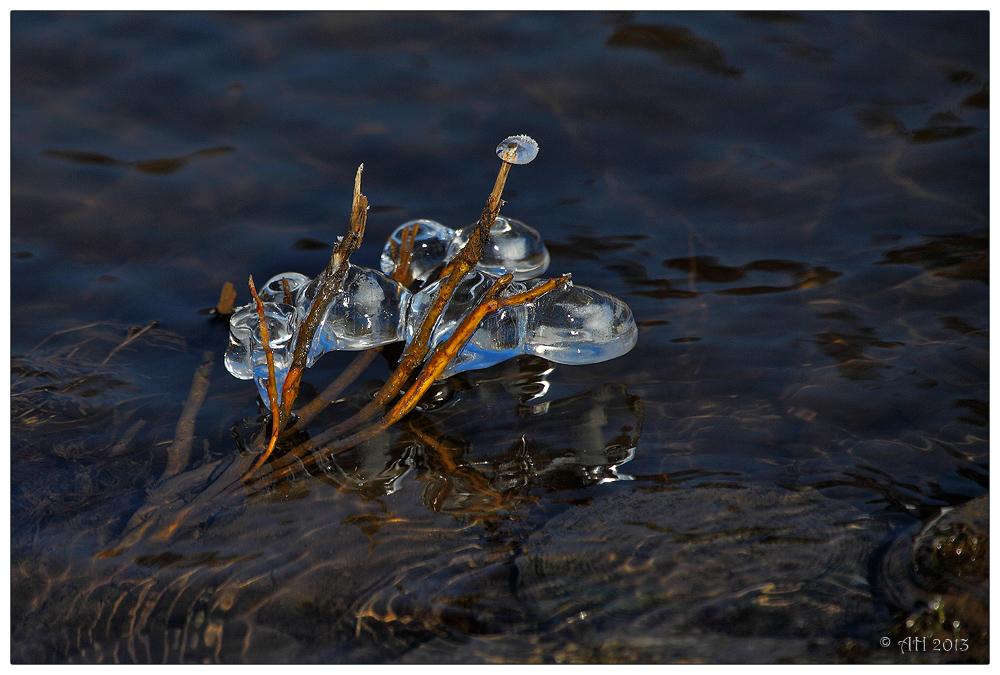 Eis-Wasser - 3