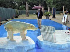 Eisbär mit Heizung im Regen...