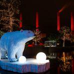 Eisbär zu Besuch ...