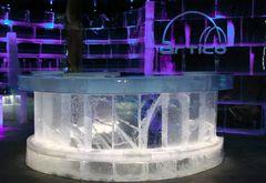 Eisbar in Honningsvag