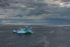 Eisberg am Strand in Twillingate                DSC_3446