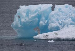 Eisberg bei Paulat Island