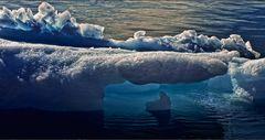 eisbergchen unter eisbergrest
