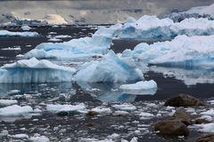 Eisberge bei Necko Harbour