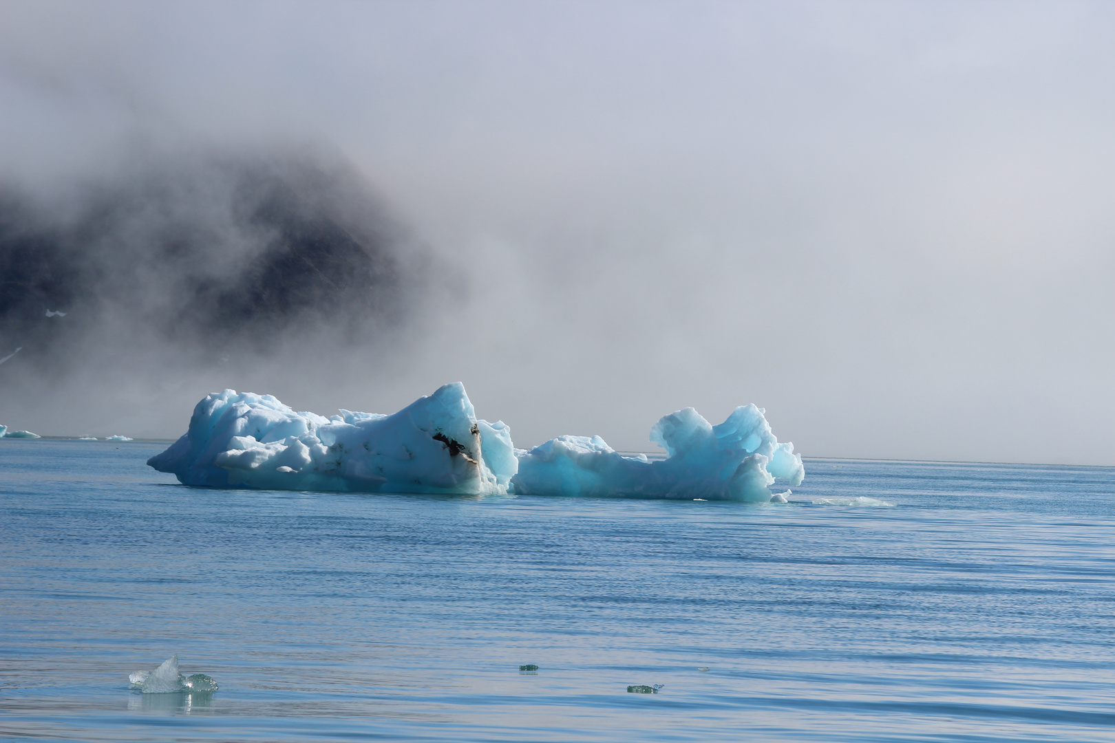 Eisbergen tauchen aus dem Nebel hervor.