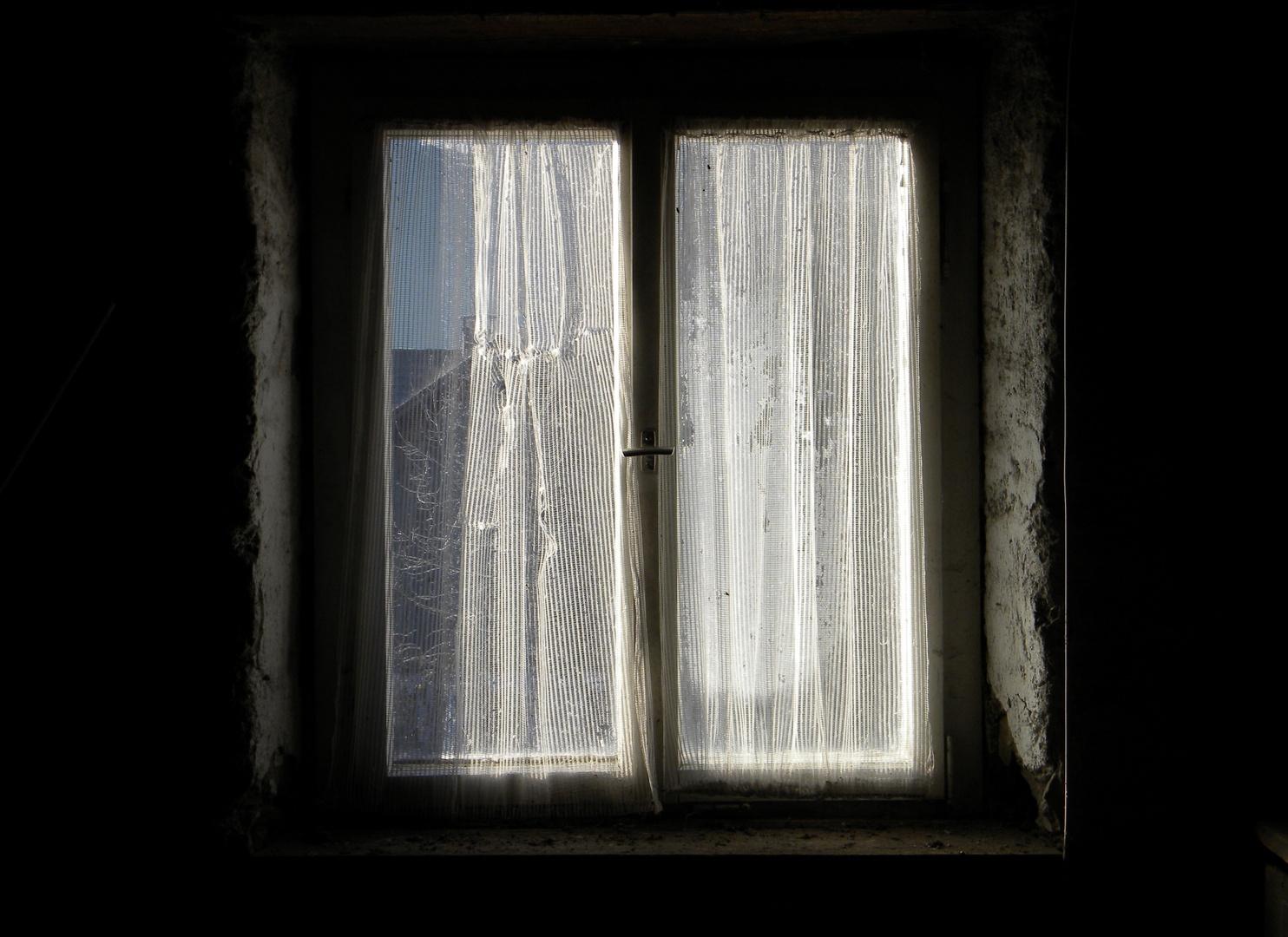 eisblumen am dachbodenfenster! foto & bild | fenster, winter, eis