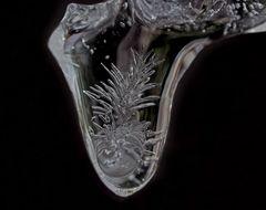 Eisblumen im Eiszapfen... - Le petit glaçon porte un bijou dans son intérieur...