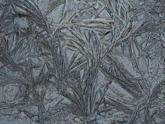 Eisblumen im Sand- und Lehmboden... - Sol argileux gelé.