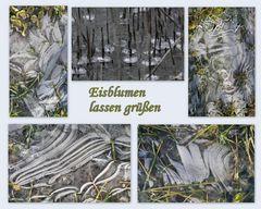 Eisblumen lassen grüßen
