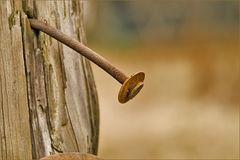 Eisen und Holz
