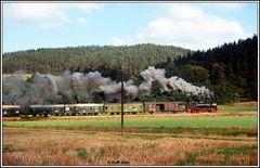 Eisenbahn und Landschaft in Thüringen 1989