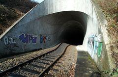 Eisenbahntunnel Büdesheim