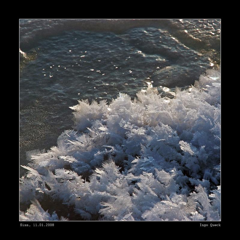 Eisfedern am Sinnufer