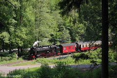 Eisfelder Talmühle, 99 7232, Juni 2013