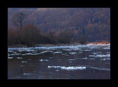 Eisgang an der Weser 2012: ...endlich Winter-Foto-Wetter...