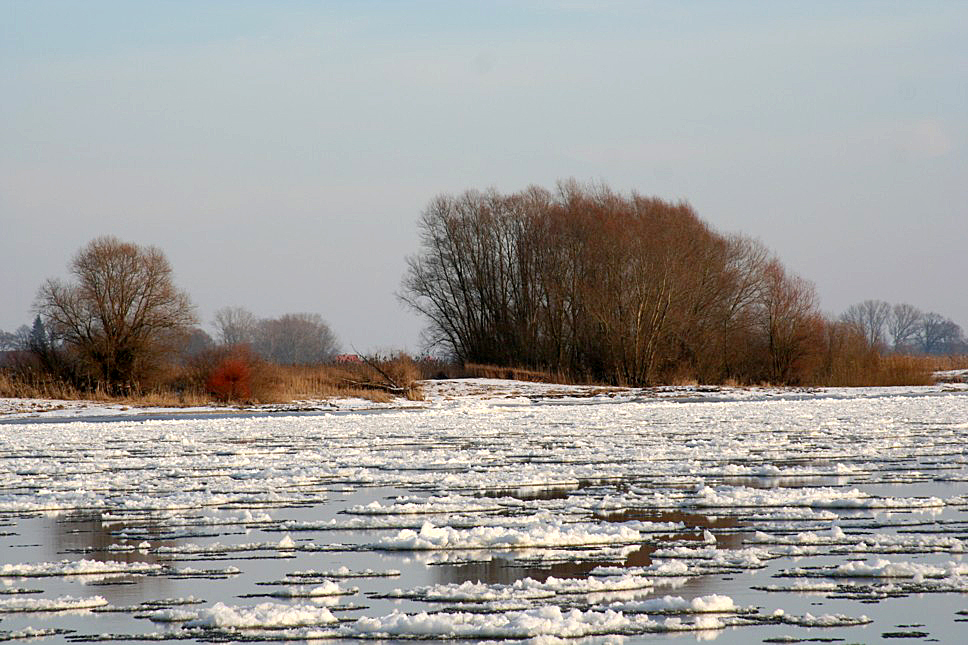 Eisgang auf der Elbe