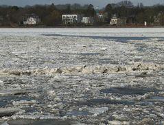 Eisgang vor Neumühlen mit Möwe:-)))