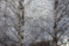Eisheilige - Ein kühler Regentag