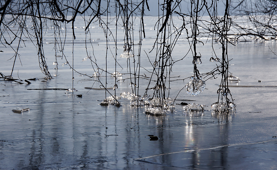 Eisige Havel, 26.02.11 – 08