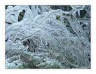 Eisige Winterwelt
