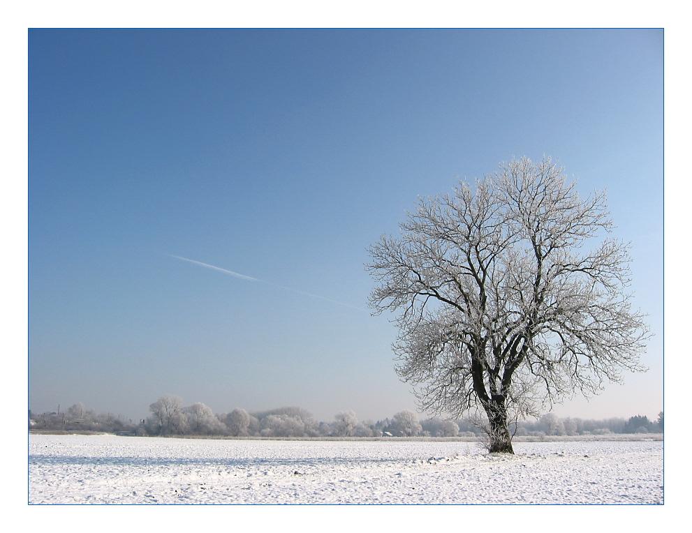 Eisige Zeiten - 5: Kalte Socken im Feld