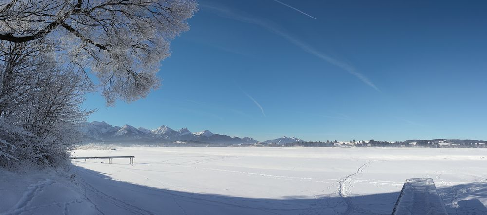 ~ Eisiger Forggensee ~