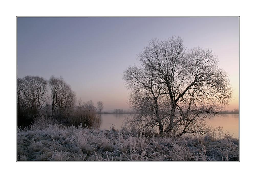 Eisiger Morgen am See