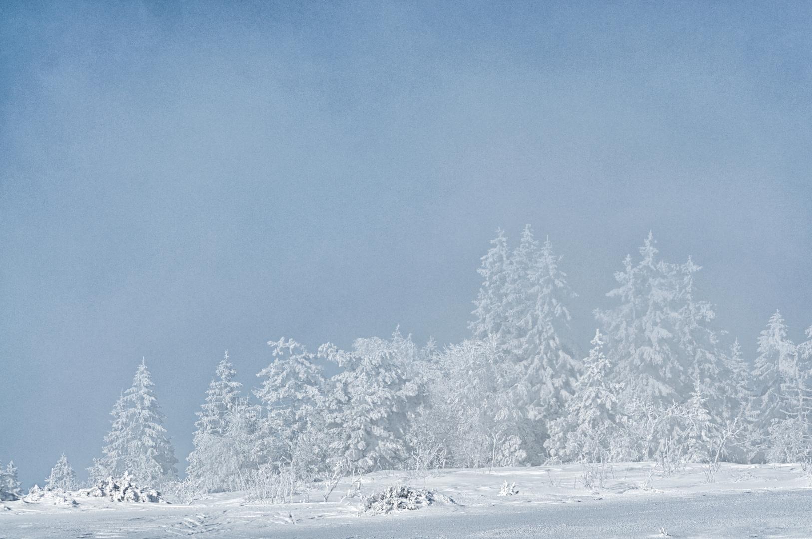 Eisiger Winter