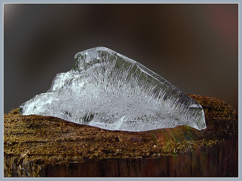 Eiskalt 1