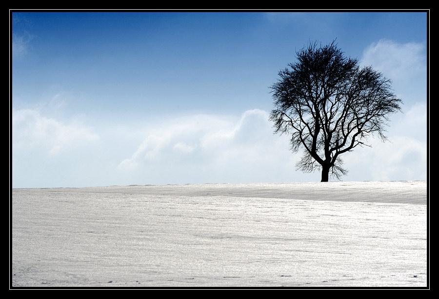 Eiskalt (2)