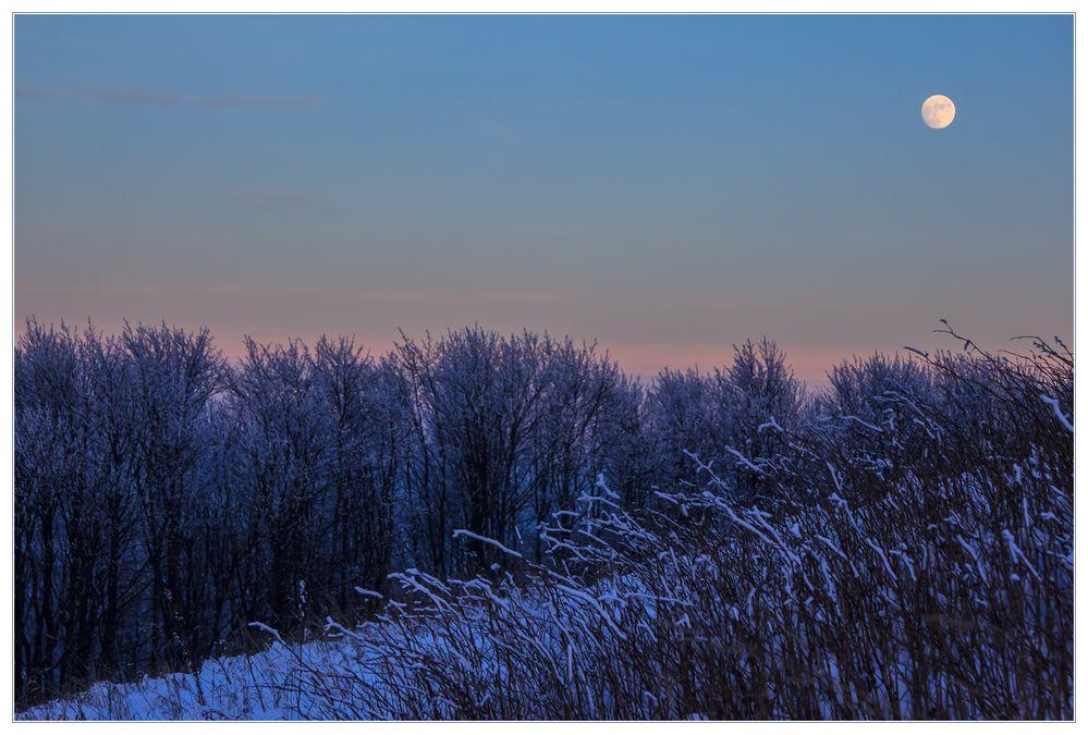 Eiskalt war ´s, der Mond schien helle... - Blaue Stunde auf dem Köterberg...
