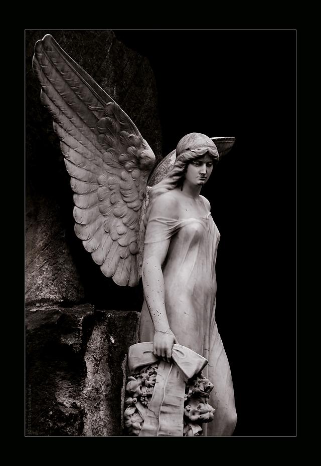 . . . eiskalter engel . . .