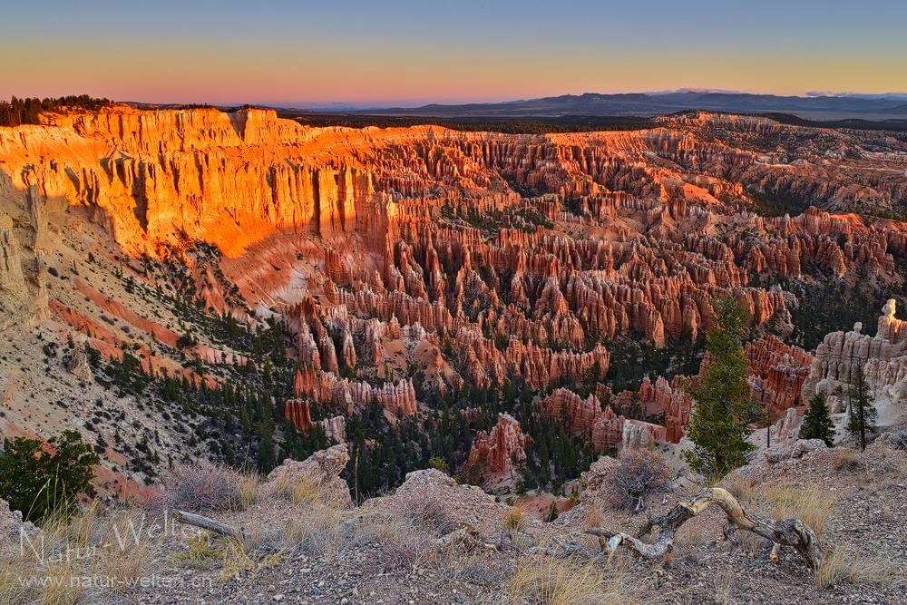 Eiskalter Morgen im Bryce Canyon - DRI