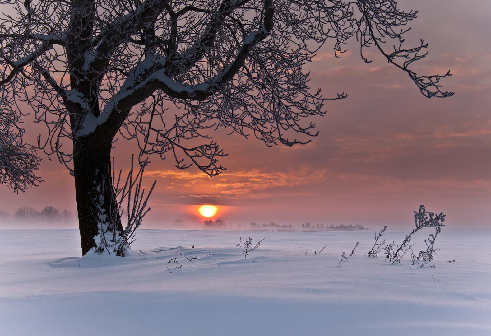 Eiskalter Sonnenaufgang