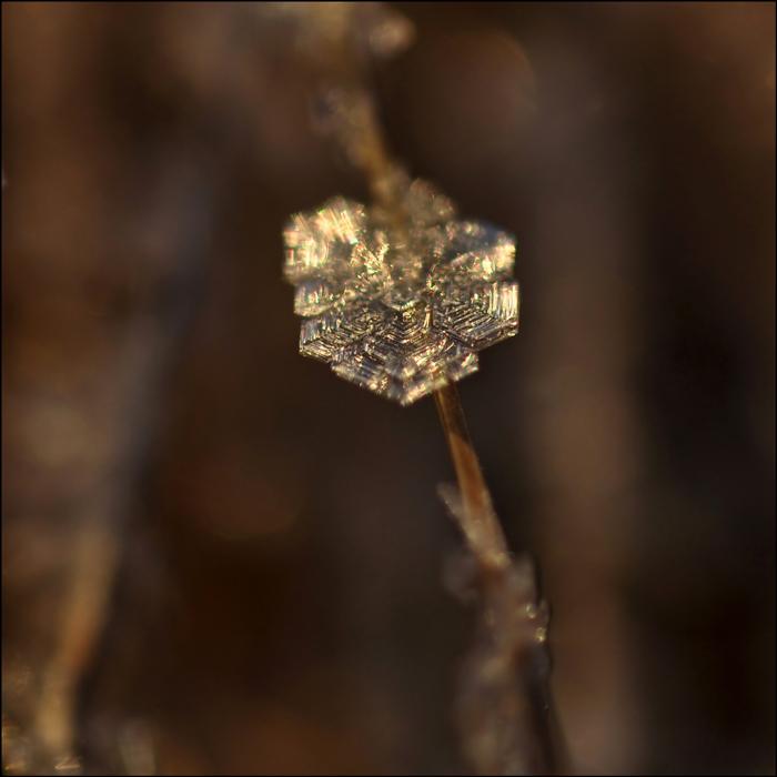 eiskaltes Kristall