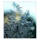 Eiskristalle (1)