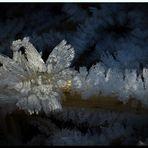 Eiskristalle Zauber der Natur