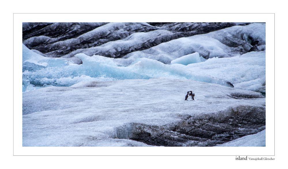 Eislandschaft in island